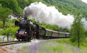Museum-Train